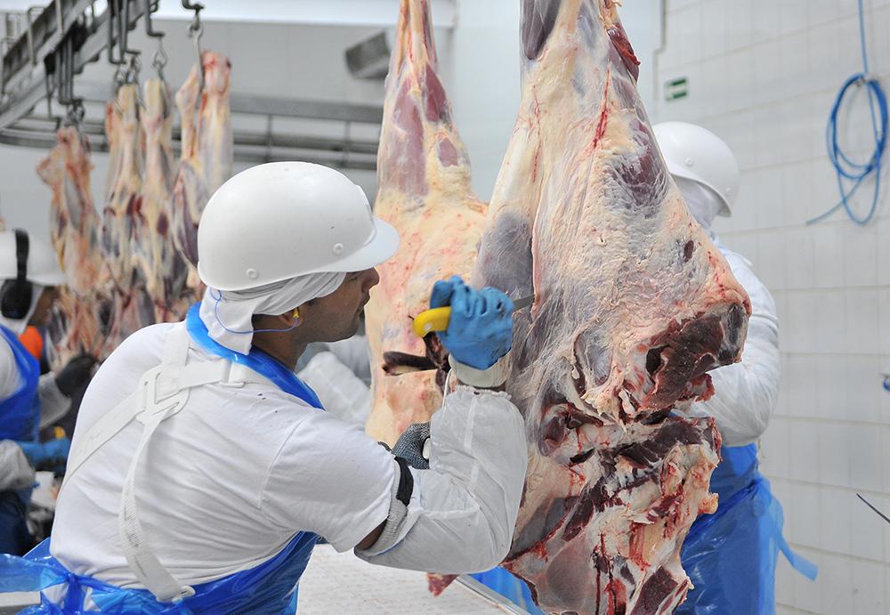 Crescimento pode chegar a 20% caso a China controle o coronavírus