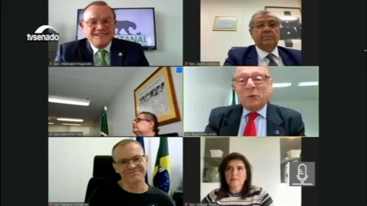Parlamentares querem Estatuto que estabeleça indicadores de sustentabilidade no Pantanal