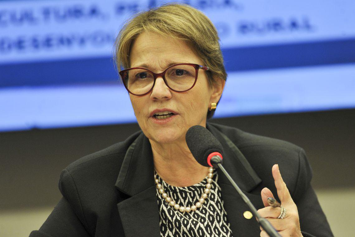 Tereza Cristina: deve seguir com Azambuja e Bolsonaro, no PP